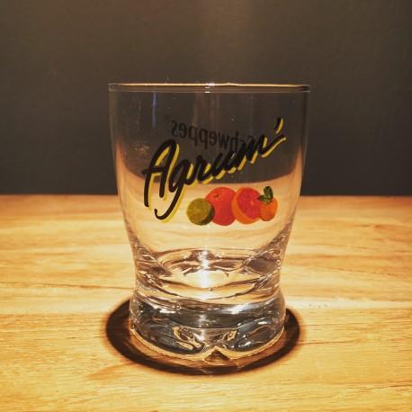 Glass Schweppes Agrum