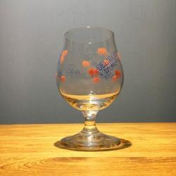 Glass Beer Delirium Tremens...