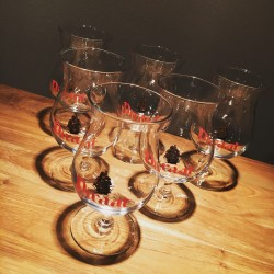 Glasses Beer Pirate 25cl